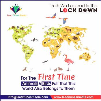 For the first time animals and birds felt that this world also belongs to them Call Us : +91 91362